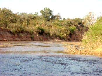 En el departamento de Anta cayeron más de 160 mm de agua