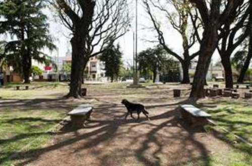El Gobierno quiere poner Wi-Fi en las plazas de 1000 pueblos