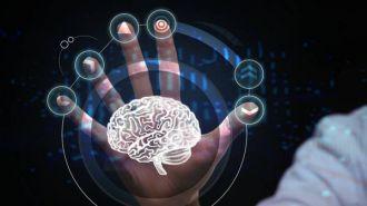 Cinco claves para mantener el cerebro joven