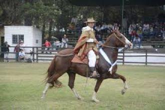 Se viene la 34º Concurso de Caballos Peruanos de Paso